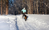 istock Woman on ski is going for a running dog. 120052870