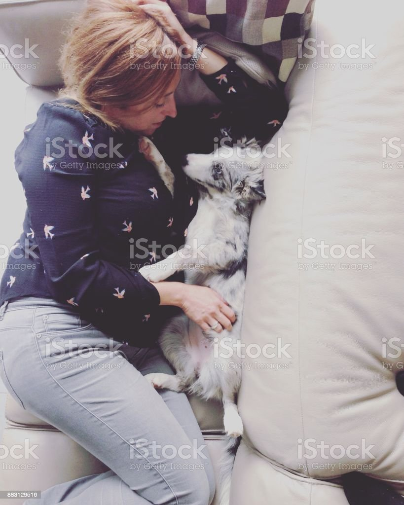 woman on sofa with a border collie puppy stock photo