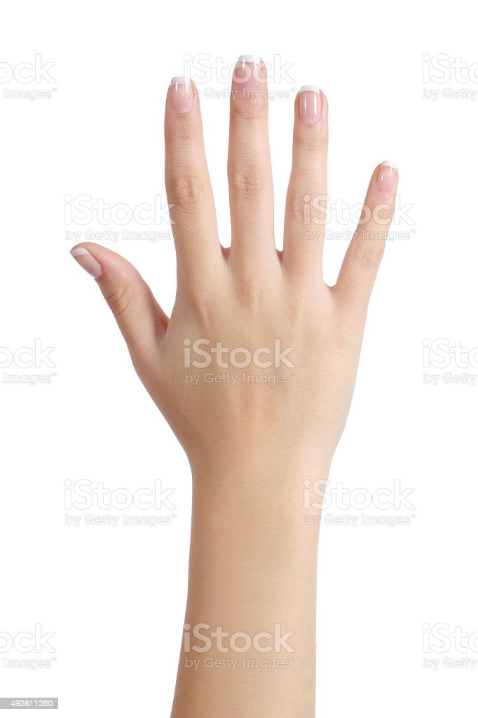 Woman open hand with french manicure stock photo