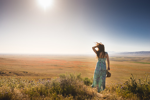 Woman overlooking a windy Antelope Valley Poppy Reserve