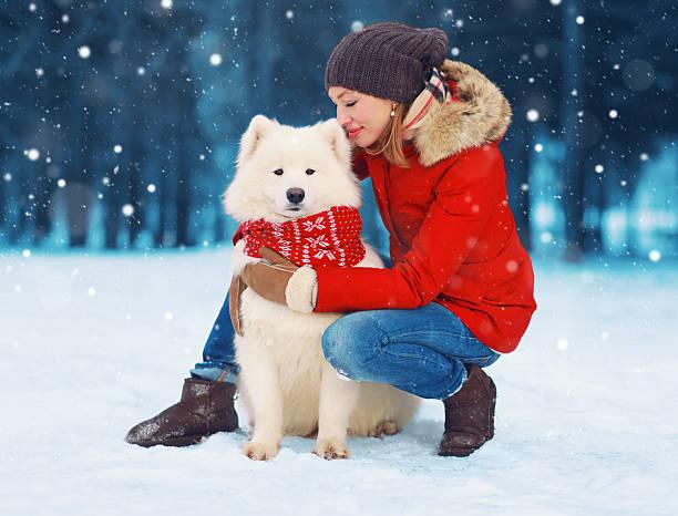 Woman owner petting embracing white samoyed dog on snow winter picture id627397582?b=1&k=6&m=627397582&s=612x612&w=0&h=rwnkfk ozo1ozlhkb q1ssbhhpbmtugd8semh2jpc4i=