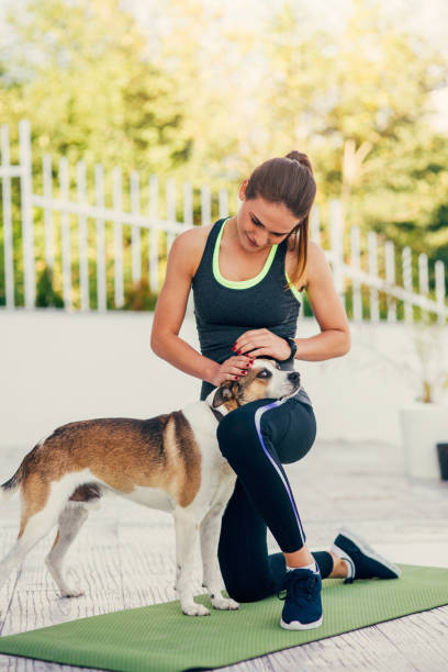 Woman petting a dog during exercise picture id844015678?b=1&k=6&m=844015678&s=612x612&w=0&h=4fonp fvxh9yxkmtizxonutrctvxrsb3in bt4c4fpq=