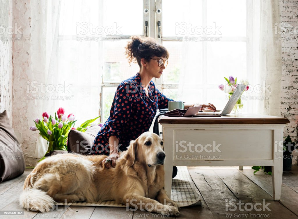 Woman Petting Goldent Retriever Dog stock photo