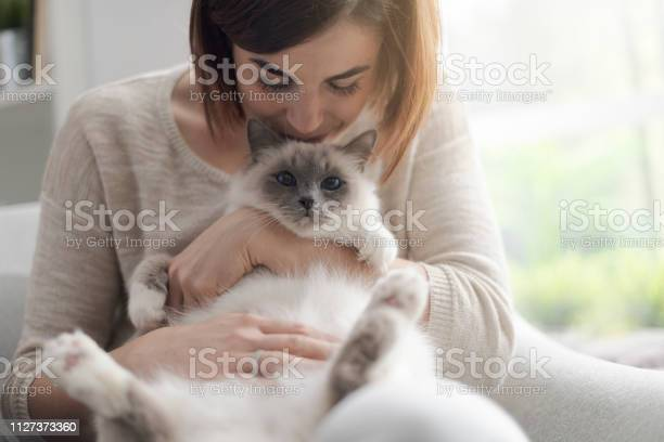 Woman petting her beautiful cat at home picture id1127373360?b=1&k=6&m=1127373360&s=612x612&h=6h2837j3gvnlhivjivk1z v44l77epgo7ikob36ue8e=
