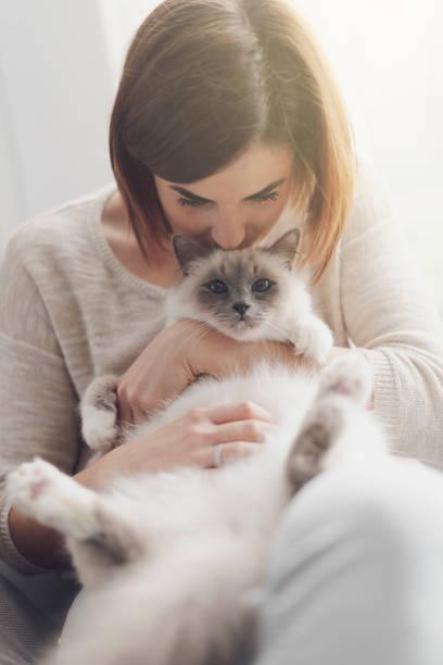 Woman petting her beautiful cat at home picture id1127373583?b=1&k=6&m=1127373583&s=612x612&w=0&h=tpicocstm51t t sdafoqu 1klnwroyjalbsldvfabk=