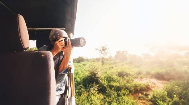 kvinnan fotograf tar en bild med professionell kamera från turistiska fordon på tropiska safari - safari bildbanksfoton och bilder