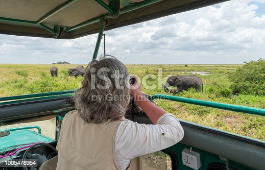 Woman in safari jeep taking picture of elephants, Africa, Serengeti national park. Camera on bean bag.