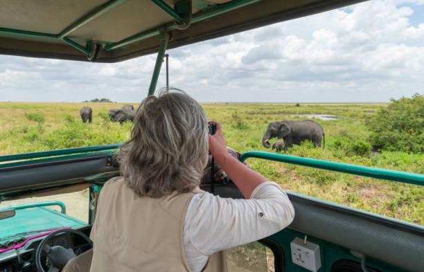 Woman photographing elephants in safari jeep africa picture id1005476954?b=1&k=6&m=1005476954&s=612x612&w=0&h=j1bjmqegc jrbomosm66vnblj5s0zyvklbhtvovhnre=