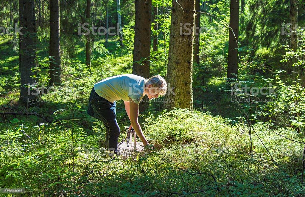 Woman picking berries stock photo