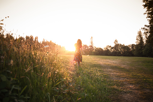 Woman Picking Wildflowers In Meadow At Sunset Stock Photo - Download Image Now