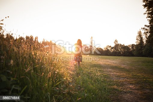Woman Picking Wildflowers In Meadow At Sunset Stock Photo & More Pictures of Adult