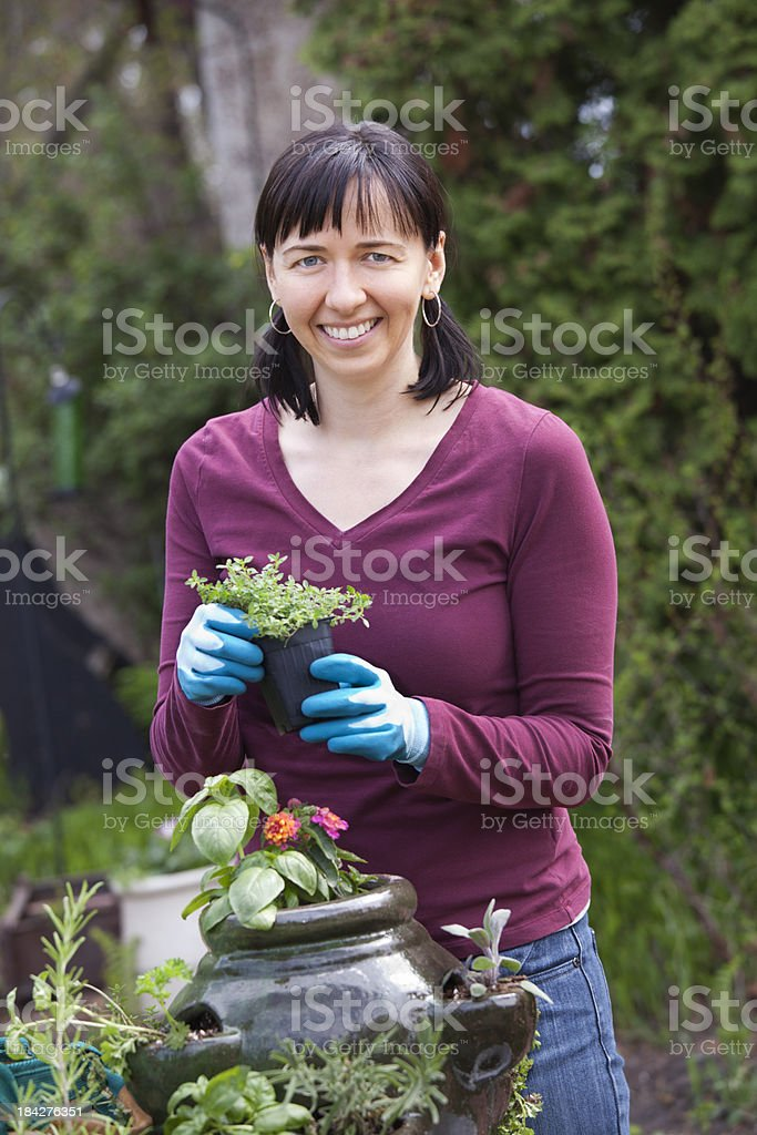 Woman Planting Flowers And Herbs stock photo