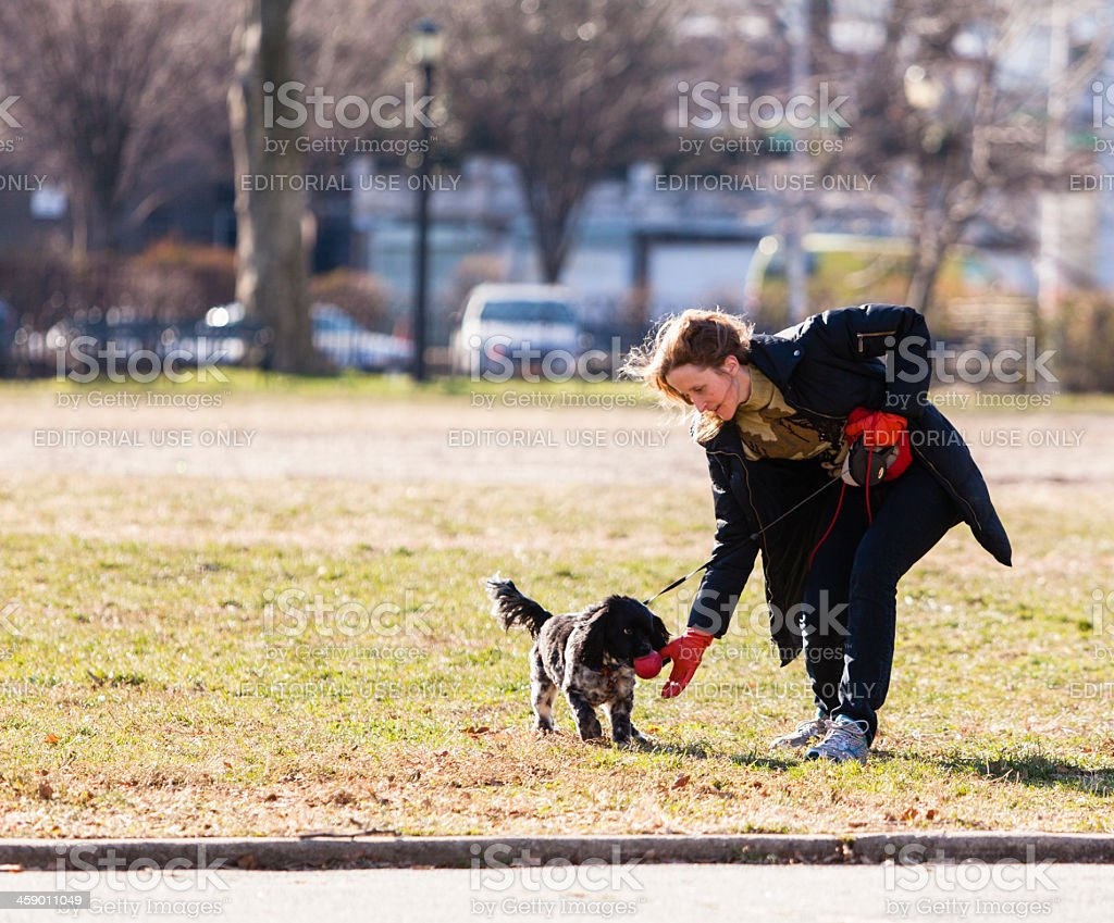 Woman play with a dog royalty-free stock photo