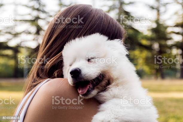 Woman playing with a small dog picture id824538424?b=1&k=6&m=824538424&s=612x612&h=uuhu5gaowchnxeitlw36ps44xignqjuhepgq o v8lc=