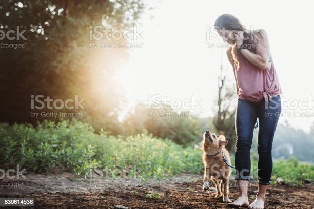 Woman playing with dogs at river picture id830614536?b=1&k=6&m=830614536&s=612x612&h=usj jcrolawtvur1ctw sduvfrnore9atk agwbllne=