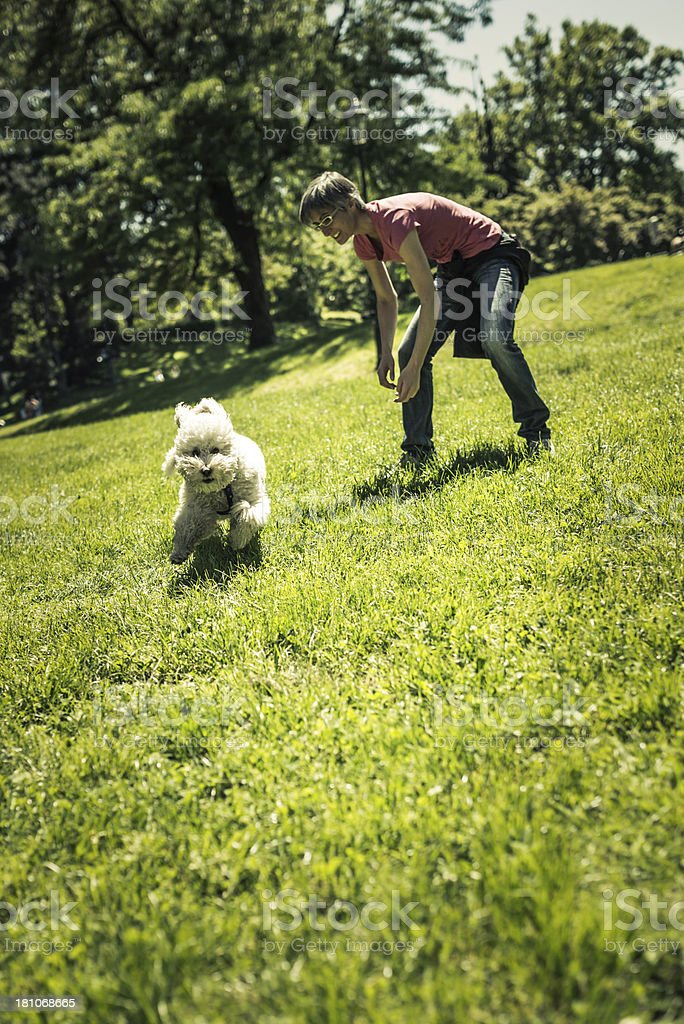 Woman Playing with her Dog at Park royalty-free stock photo