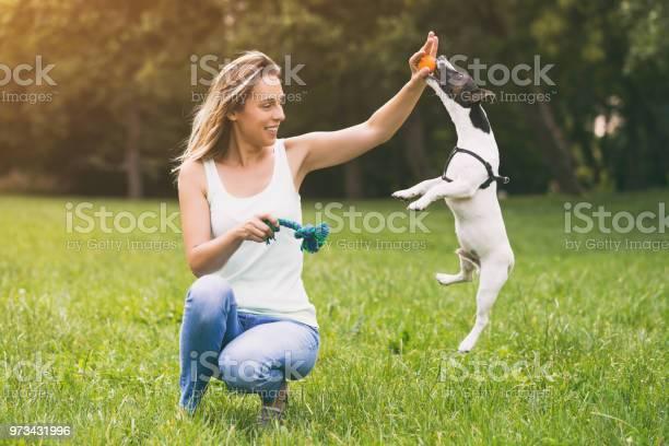 Woman playing with her dog jack russell terrier picture id973431996?b=1&k=6&m=973431996&s=612x612&h=fy0koe5bxtizwptt49okaa2skwjisfxjvcuak2sqirc=