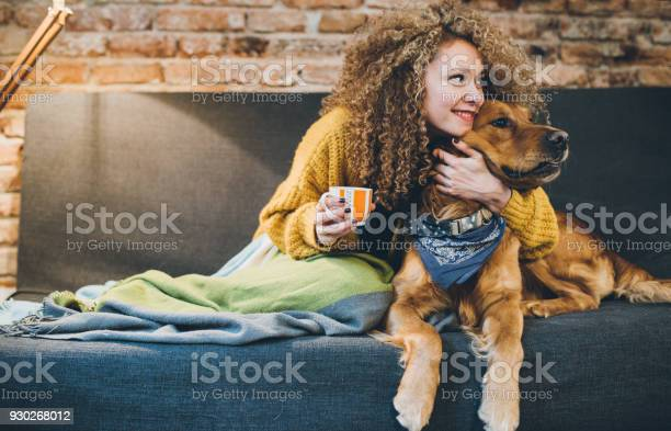Woman playing with her dogs picture id930268012?b=1&k=6&m=930268012&s=612x612&h=ets7isx1ngkqslyd7r31iohnfs 6kvcpzewl6vrx ss=