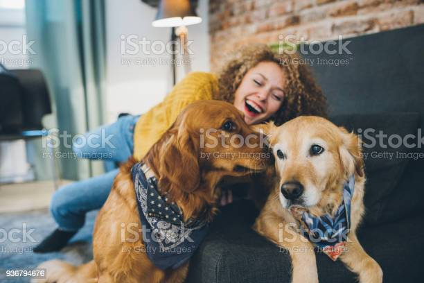 Woman playing with her dogs picture id936794676?b=1&k=6&m=936794676&s=612x612&h=izxlg5lkemfua7ci88wcrfp7rcjr2ot7 2riohyokqy=