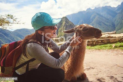 Woman playing with lama on machu picchu background