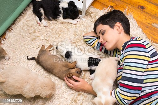 Beautiful young woman playing with puppies on the bedroom floor.