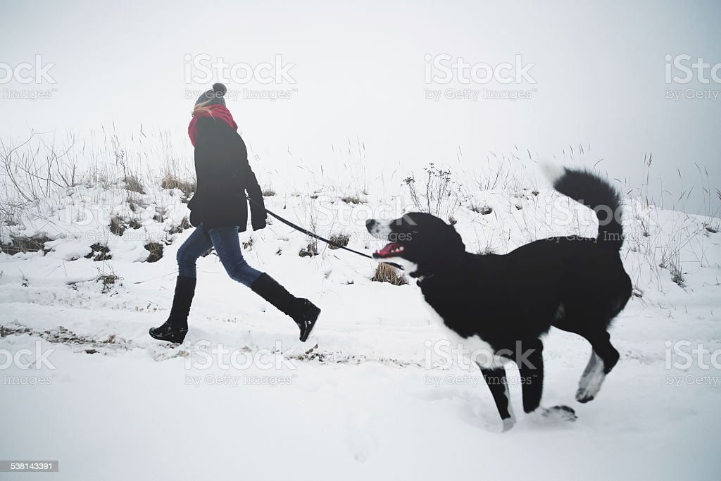 Woman playing with the dog in fresh snow stock photo