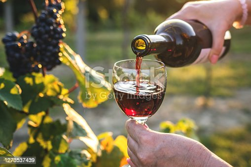 istock Woman pouring red wine at vineyard 1273537439