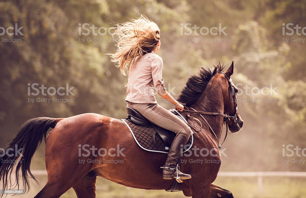 Woman practicing with her horse outdoors. stock photo