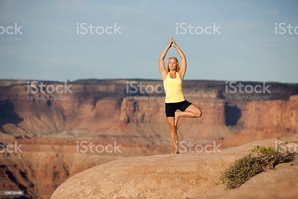 Woman Practicing Yoga In Tree Pose (Vrksasana) royalty-free stock photo