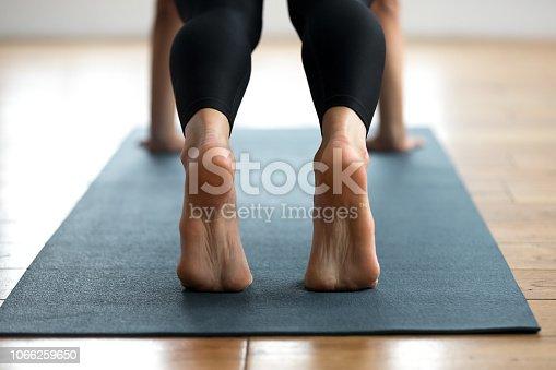 675173150 istock photo Woman practicing yoga, Plank pose close up 1066259650