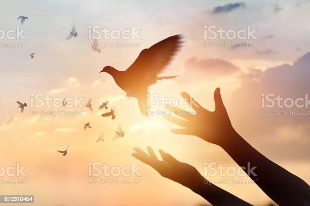 Woman praying and free bird enjoying nature on sunset background hope picture id672310454?b=1&k=6&m=672310454&s=612x612&h=fl5b48favph n3fpuzfdikq6giupw9l2jhw5umf9dqe=