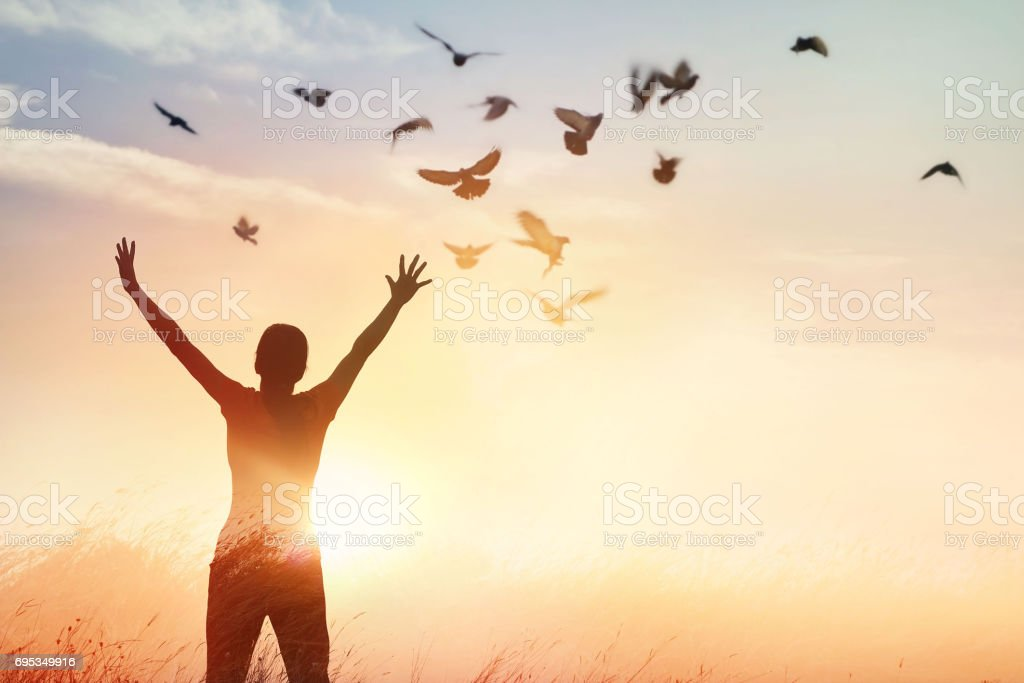 Woman praying and free bird enjoying nature on sunset background, hope concept foto stock royalty-free