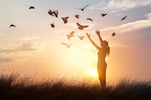 Woman Praying And Free Bird Enjoying Nature On Sunset Background Stok Fotoğraflar & Affetme'nin Daha Fazla Resimleri