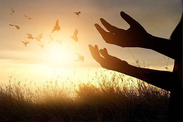 Woman praying and free bird enjoying nature on sunset background picture id599780600?b=1&k=6&m=599780600&s=612x612&w=0&h=gkeiazjk005ws2bj633epa0inw7wu2v1zooclx hovw=