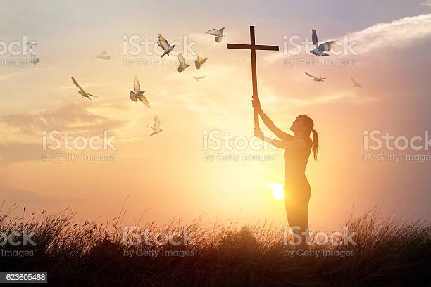 Photo of Woman praying with cross and flying bird in sunset background