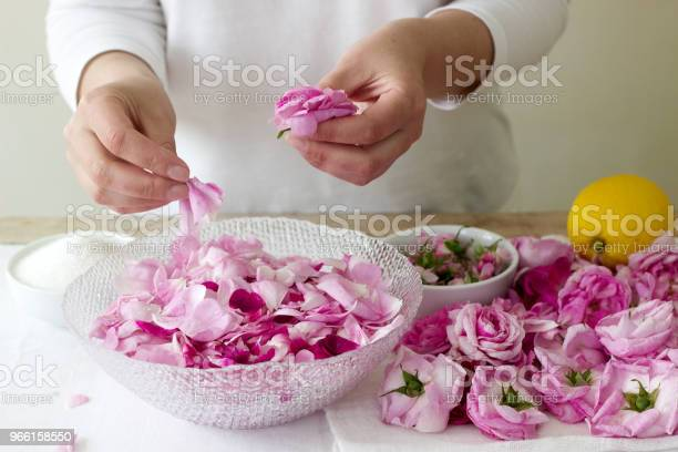 A Woman Prepares Jam From Roses Ingredients For Jam From Roses Rustic Style — стоковые фотографии и другие картинки Ароматерапия
