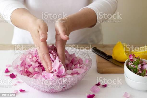 En Kvinna Förbereder Sylt Från Rosor Ingredienser För Sylt Från Rosor Rustik Stil-foton och fler bilder på Aromaterapi