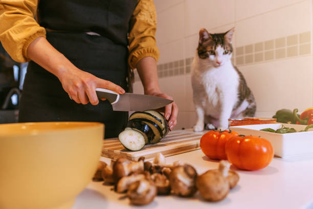 Woman preparing delicious pizza with her sweet cat picture id936016006?b=1&k=6&m=936016006&s=612x612&w=0&h=xfhx2ff0kvjfxto8ooqhgh 73cltpgsmfklltkngons=