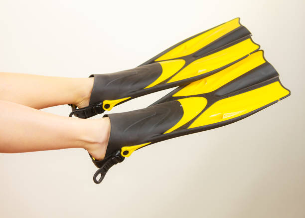 Woman presenting flippers female legs in fins Woman with flippers having fun presenting snorkeling fins on her feet studio shot on grey. Funny girl dreaming about swimming summer vacation diving flipper stock pictures, royalty-free photos & images