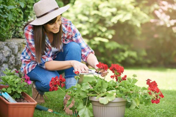 Frau schneidert Blumen im Hinterhof – Foto