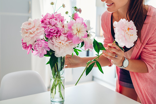 Woman puts peonies flowers in vase. Housewife taking care of coziness and decor on kitchen. Composing bouquet.