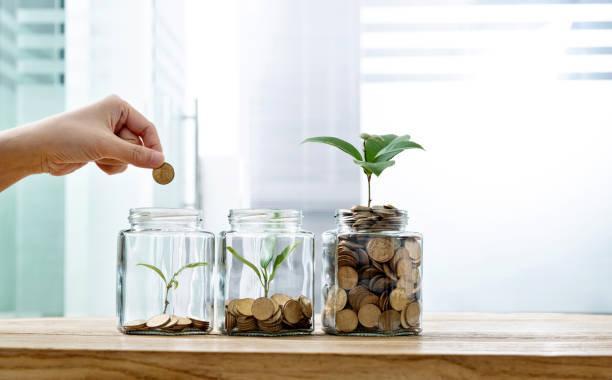 mujer poniendo moneda en el frasco con planta - inversión fotografías e imágenes de stock