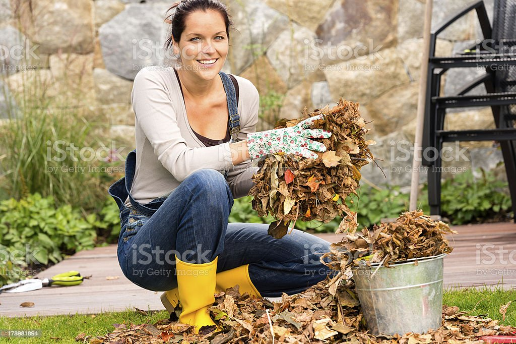 Woman putting leaves gardening cleaning bucket housework stock photo