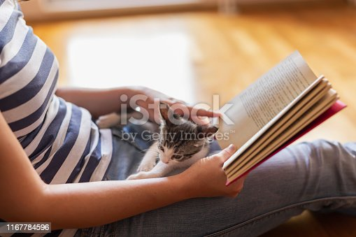 istock Woman reading a book and holding kitten 1167784596