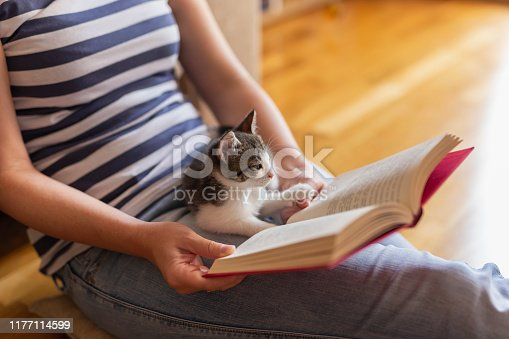 istock Woman reading book and cuddling kitten 1177114599