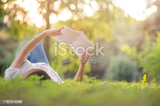Turkey - Middle East, Reading, Book, Public Park, woman, leaf, tree