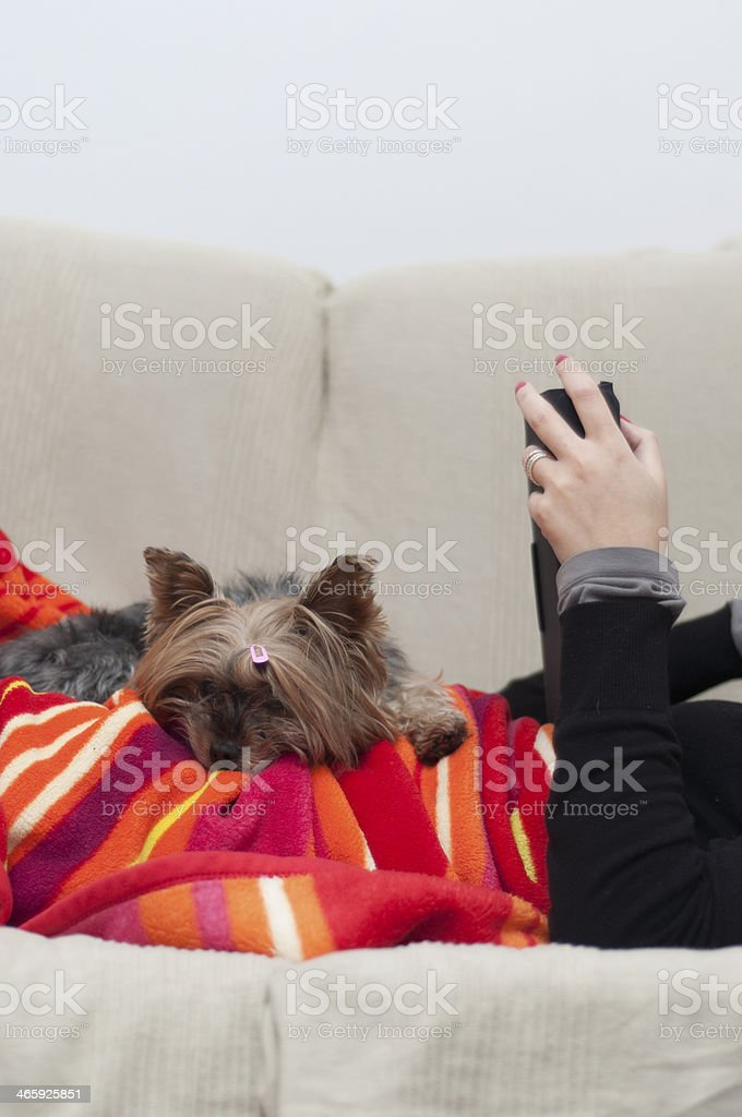 woman reading next her pet royalty-free stock photo