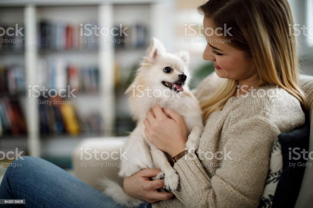 Woman relaxing at home with her dog stock photo
