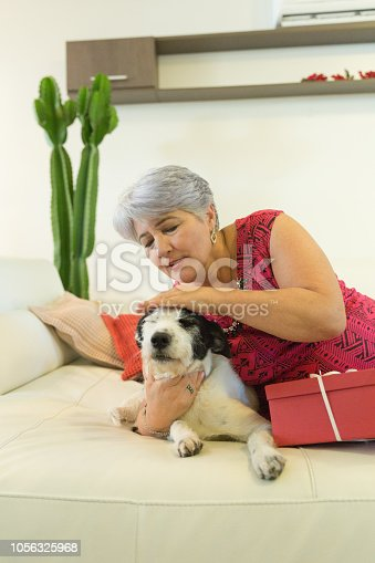 istock Woman Relaxing At Home With Pet Dog 1056325968