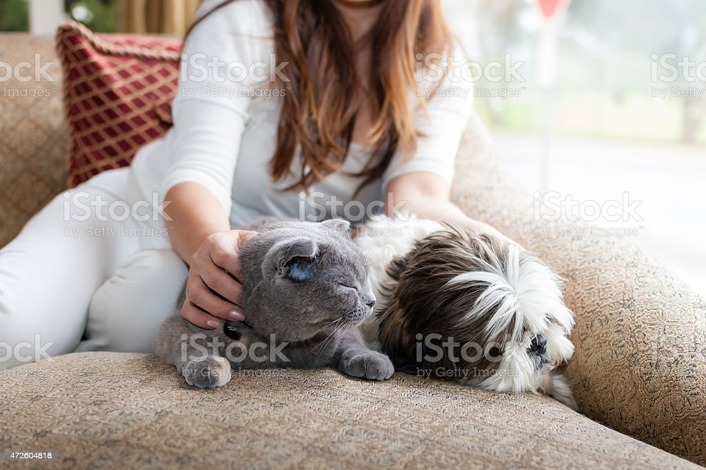 Woman relaxing with her cat and dog in her home stock photo